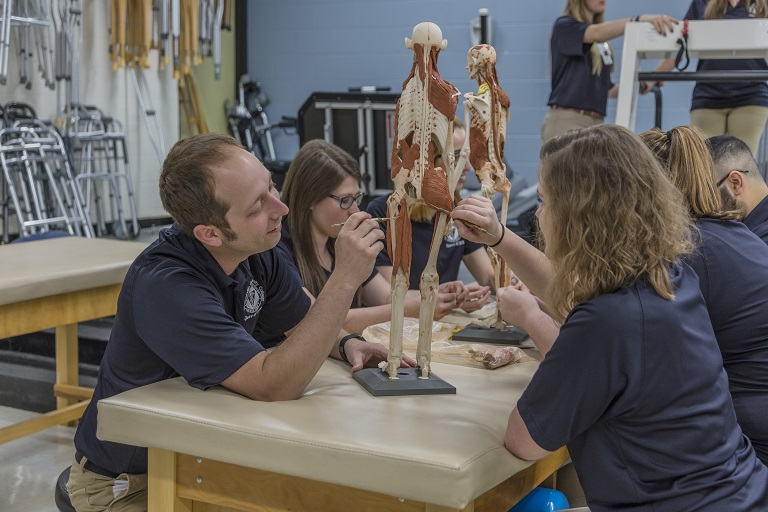 Physical therapy students examine a model of a human skeleton